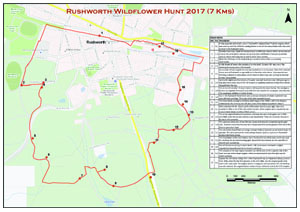 [picture of Wildflower Hunt 2016 map]